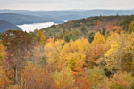 Overview of Quabbin Reservoir and Forest in Fall, New Salem, MA