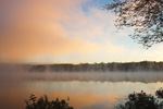 Early Morning Fog and Light at Lake Dennison Recreational Area, Birch Hill Wildlife Management Area, Winchendon, MA