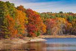 Hardwood Forest in Fall along Shoreline of Scituate Reservoir, Scituate, RI
