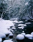 Snow-covered Rocks and Bank along Green River, Halifax, VT