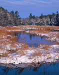 Lawrence Brook and Marsh in Winter Snow, Royalston, MA