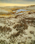 Sand Dunes in Winter, Crane Beach, Trustees of Reservations, Ipswich, MA