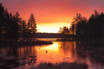 Sunrise on Sportsman Pond, Fitzwilliam, NH