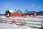 Red Barns and White Fences in Winter under Blue Skies, Sweet Tree Farm, Dummerston, VT
