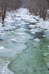 Mid Branch Williams River in Winter, Chester, VT