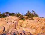 Cliffs along Ocean Edge at Schoodic Point, Acadia National Park, Winter Harbor, ME