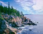 Cliffs at Acadia National Park, Mt Desert Island, ME