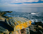 Orange Lichens on Square Stone Formation along Rocky Maine Coast, Two Lights State Park, Cape Elizabeth, ME