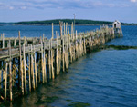 Old Wooden Wharf and Lobster Shack, Moosabec Reach, Jonesport, ME