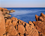 Rock Formations along Shoreline at Bass Harbor Head, Acadia National Park, Mt Desert Island, ME