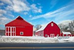 Big Red Barns on Letendre Farm after Snowstorm, Ware, MA