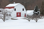 Big White Barn with Red Trim in Winter, Orange, MA