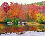 Brilliant Fall Foliage along Millers River, South Royalston, MA