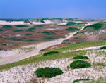 Dunes and Fisherman's Access Road, Province Lands, Cape Cod National Seashore, Provincetown, MA