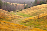 Rolling Hills and Pastures outside Mountain View, Ozark Mountains, Stone County, AR