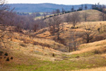 Rolling Hills and Pastures near Verona in the Ozark Mountains, Marion County, AR