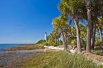 St Marks Lighthouse with Palm Trees along Shoreline of Apalachee Bay, National HIstoric Site, St Marks National Wildlife Refuge, Gulf Coast, Florida Panhandle, Gulf of Mexico, Wakulla County, FL