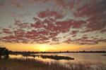 Sunset over Marsh at St Marks National Wildlife Refuge, Gulf Coast, Florida Panhandle, Gulf of Mexico, Wakulla County, FL