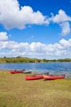 Canoes on Shoreline of Nine Mile Pond under Blue Skies and Cumulus Clouds, Everglades National Park, FL