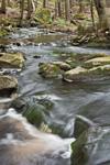 Closeup View of Falls Brook along Metacomet-Monadnock Trail, New England National Scenic Trail, Royalston, MA