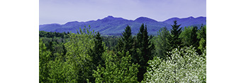 Long View of Lewey and Snowy Mountains, Adirondack State Park, near Lake Pleasant, NY