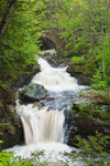 Doane's Falls (Upper Falls) on Lawrence Brook in Spring, Trustees of Reservations, Royalston, MA