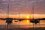 Sunrise over Sailboats at Moorings on Pine Island Bay, off Fishers Island Sound, Groton, CT