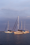 Early Morning Light on Sailboats at Moorings in Pine Island Bay, off Fishers Island Sound, Groton, CT