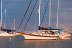 """Early Morning Light on Bayfield 32 Cutter-rigged Sailboat """"Brown Eyes"""" on Pine Island Bay, off Fishers Island Sound, Groton, CT"""