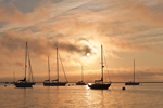 Rising Sun over Sailboats in Fog in Rockland Harbor, Rockland, ME