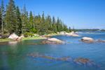 Shoreline along Davids Island, Seal Bay, Vinahaven, ME