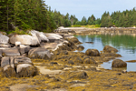 Rocks and Beach at Low Tide along Shoreline of Wreck Island in Archipelago between Deer Island Thorofare and Merchant Row; Stonington; ME,