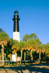 Hunting Island Lighthouse with Palm Trees and Blue Sky, Registered National Historic Landmark, Hunting Island State Park, Hunting Island, SC