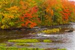 Autumn Foliage along Millers River, Royalston, MA
