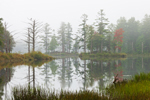 Tully Lake in Early Morning Fog, Royalston, MA
