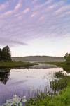 Early Morning at Phelps Pond, Colebrook, CT