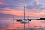 Sailboats at Sunset in Stonington Harbor, Stonington, CT
