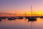 Sailboats in Vineyard Haven Harbor at Sunrise, Martha's Vineyard, Tisbury, MA