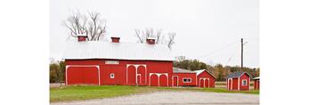 Adrian's Big Red Barn with White Trim, near Dundee, Monroe County, MI