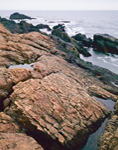 Sea-Battered Rocks, Cape Ann, North Shore, Gloucester, MA