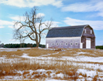 Old Barn and Tree in Winter, Penneville, Town of Brunswick, ME