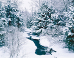 Small Stream through Snow-covered Forest, Adirondack State Park, Stratford, NY