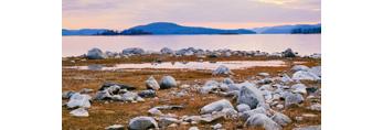 Rocks and Grasses on Shoreline of Quabbin Reservoir, New Salem, MA