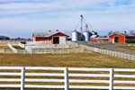 View of Alfalfa Dell Farm with White Fences, Red Barns, Pastures and Grain Silos, Chestertown, MD