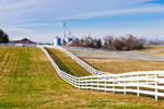 Line of White Fences with Grain Silos in Distance on Alfalfa Dell Farm, Chestertown, MD