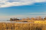 Late Evening Light on Salt Marshes at Knapp's Narrows, Chesapeake Bay, Talbot County, Tilghman, MD