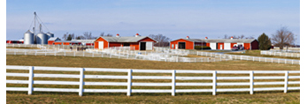 View of Alfalfa Dell Farm with White Fences, Red Barns, and Pastures, Chestertown, MD