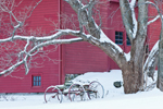 Red Barn, Maple Tree and Old Wagon in Winter, Sudbury, MA