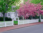 Spring Blooms and White Fence along North Water Street, Martha's Vineyard, Edgartown, MA