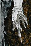 Winter's Icy Hand, Acadia National Park, Mt Desert Island, ME